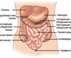 МРТ кишечника или колоноскопию — что лучше сделать?