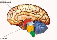 Процедура проведения МРТ гипофиза