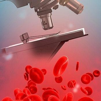 Картинки по запросу анализ крови