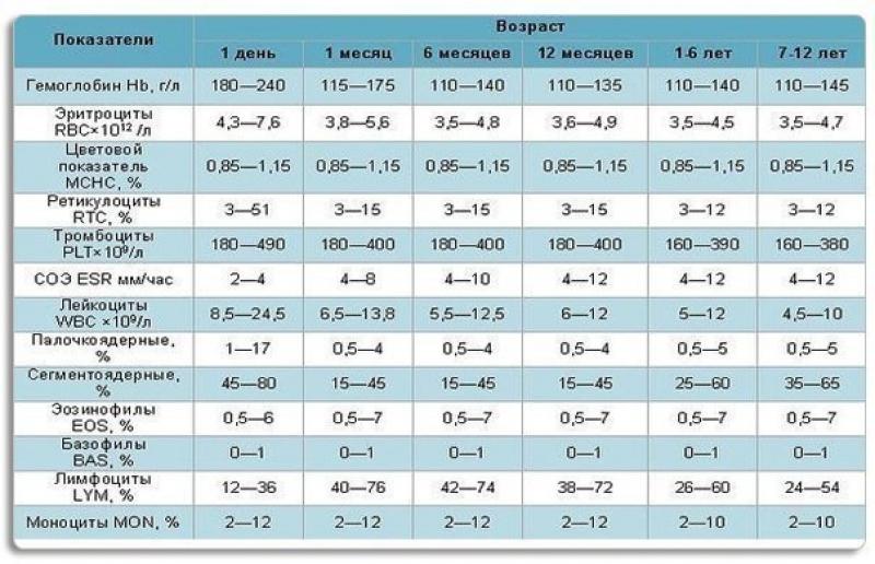 Общий анализ крови нейтрофилы норма Медицинская справка для работы с гостайной Ростокино
