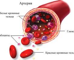 Превышение показателей при анализе крови на глюкозу