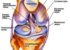 Определение масштаба травм на УЗИ коленного сустава