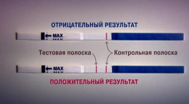 Определение беременности по тест-полоскам