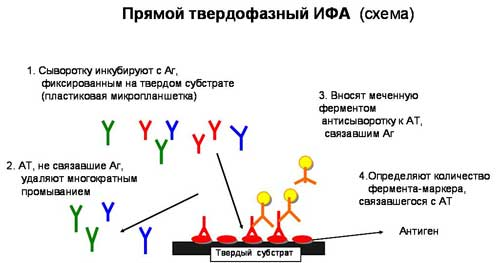 Хронический гепатит лечение санкт-петербург