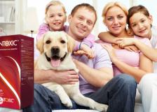 Антипаразитарное средство Intoxic – очередной развод или правда?