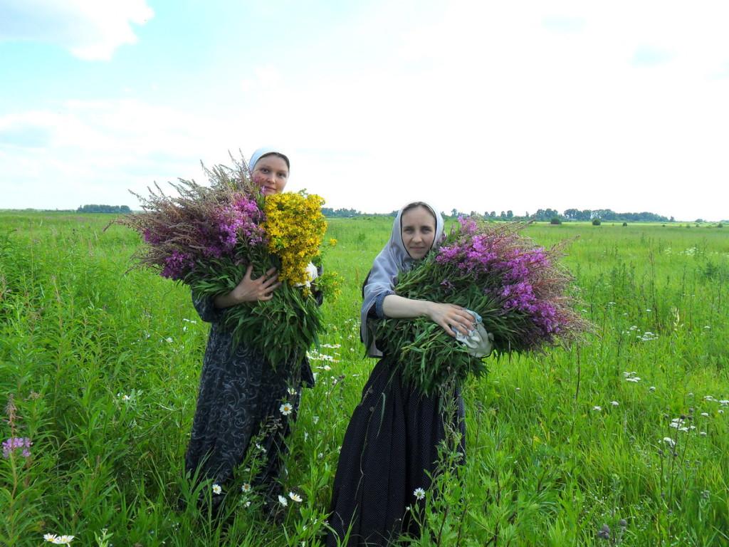 Сбор трав монахинями