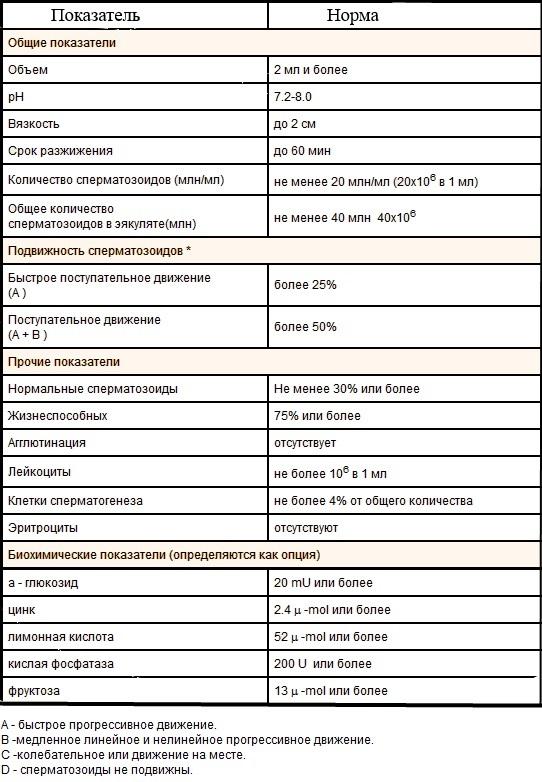 По результатам спермограммы ативных спермотазоидов 2