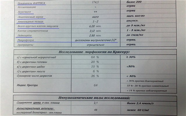 povishennie-leykotsiti-v-spermogramme