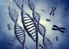 Для чего нужно цитогенетическое исследование?