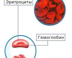 Значение средней концентрации гемоглобина в эритроците