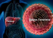 Специфические анализы крови на гепатит
