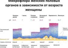 Расшифровка анализа фемофлор 16