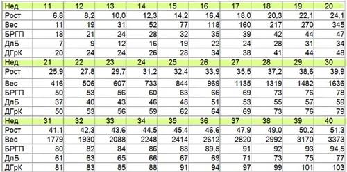 Показатели плода по результатам УЗИ
