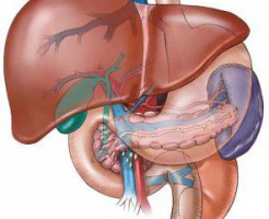 Признаки болезни печени в высоком уровне ГГТ в биохимическом анализе крови