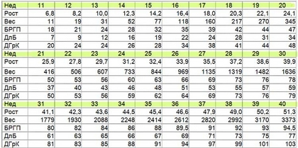 Таблица размеров плода на УЗИ