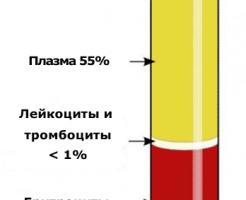 Обязательный анализ крови на СОЭ