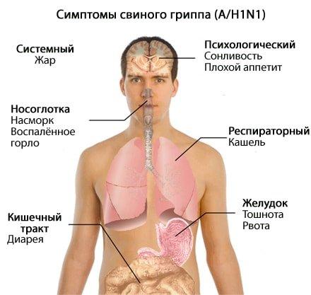 Какой анализ выявляет свиной грипп thumbnail
