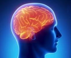 Информативный метод МРТ головного мозга с контрастом