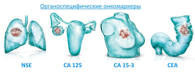 Специфические онкомаркеры