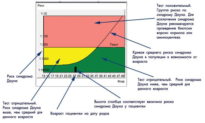 Нормы 2 скрининга при беременности по узи