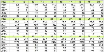 Размеры плода по результатам УЗИ в норме