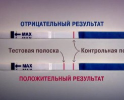 Какие анализы крови на беременность существуют?