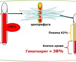 Гематокрит в общем анализе крови