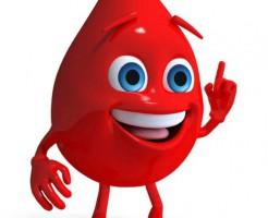 Подготовка к общему анализу крови – натощак или нет нужно сдавать?