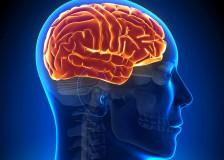 Можно ли часто делать МРТ головного мозга?