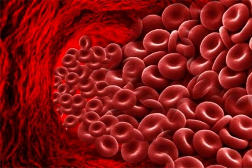 Диета при высоком гемоглобине у женщин
