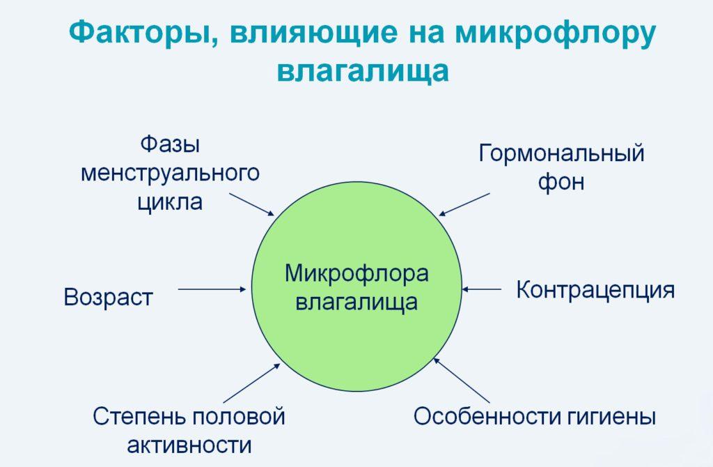 Факторы, имеющие влияние на микрофлору