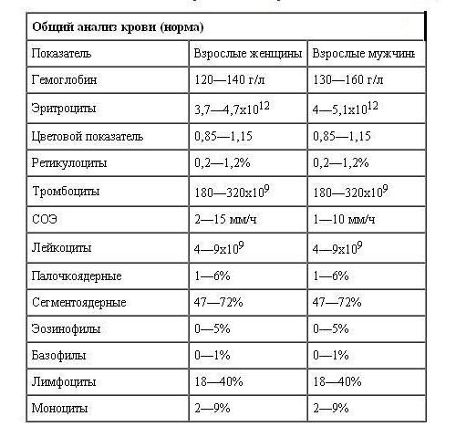 Нормальные показатели общего анализа крови