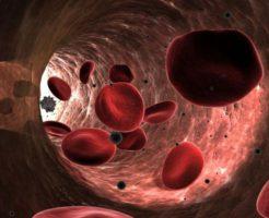 От чего зависит норма эритроцитов в крови у женщин?