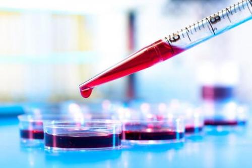 Нейтрофилы понижены в крови у взрослого