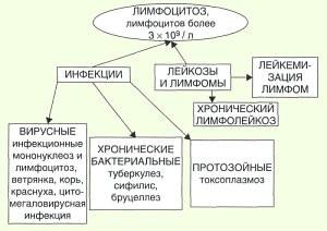 Появление лимфоцитоза