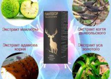 Состав Пантогора — лечебного геля для суставов