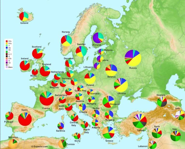 Распространение Y гаплогрупп в Европе и у русских